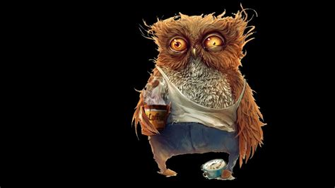 coffee owl wallpaper gallery