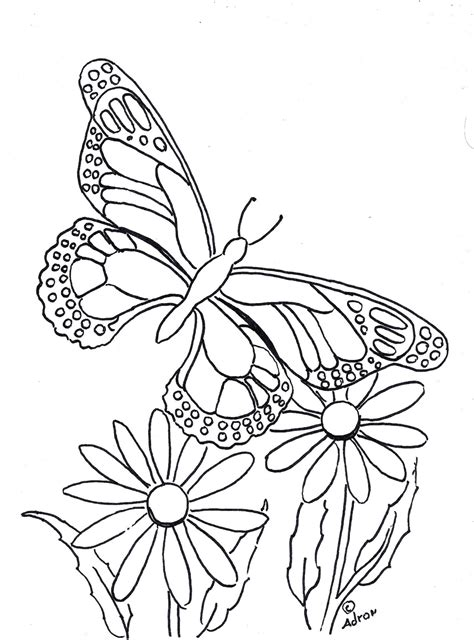 coloring pages for kids by mr adron butterfly coloring