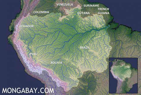 amazon com betty lou s got a new tattoo the neanderthals the amazon rainforest