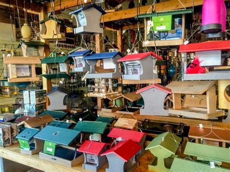 backyard birds store in store products backyard bird shop