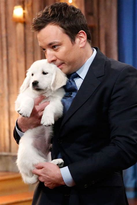 jimmy fallon puppies 112 best guys and dogs images on best friends doggies and