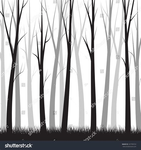 Photo Collection Forest Simple Background Trees