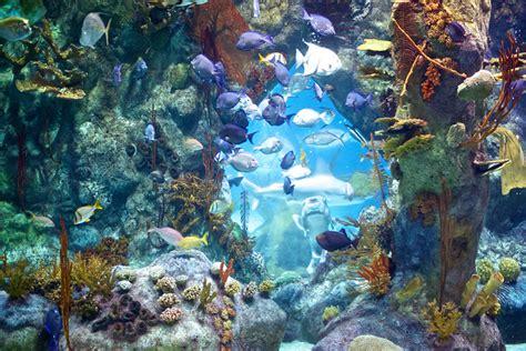 Albuquerque Aquarium And Botanical Gardens Bio Park Zoo Albuquerque Metro Area Homes For Sale Property Search In Albuquerque