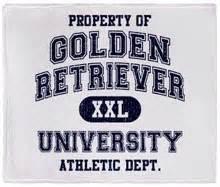 golden retriever fleece fabric golden retreiver pillow tapestry pillow of a golden retrieve measures breeds picture