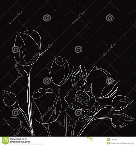 imagenes blancas en fondo negro fondo negro con las rosas blancas imagenes de archivo