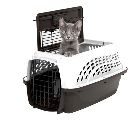 best carrier petmate two 2 door top loading carrier for cats dogs and rabbits generation pets