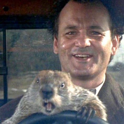 groundhog day actor bill murray groundhog day actors