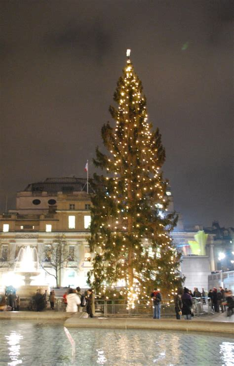 who introduced xmas trees to britain guide to the best free last minute carol services in in