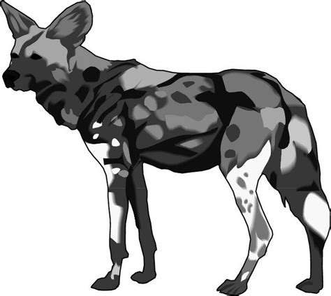 free wild dog coloring pages