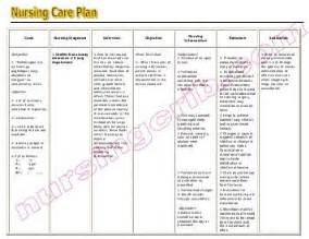 care plan sle template ncp sle pdf nursing crib