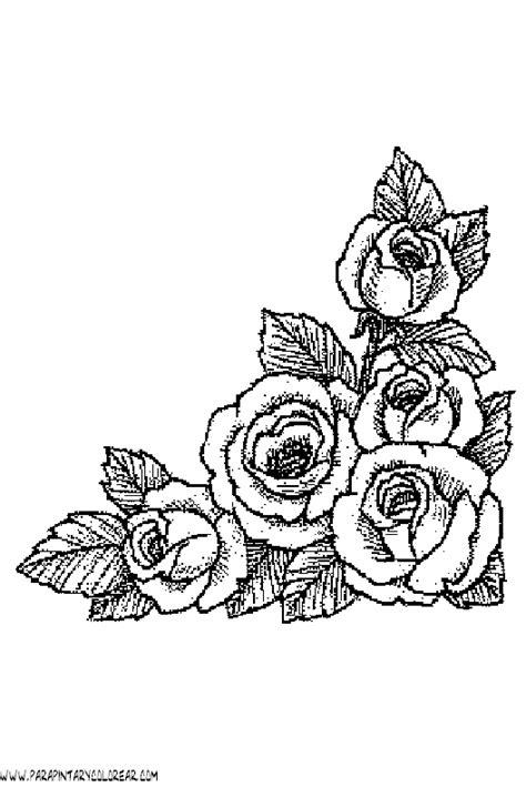 imagenes e flores para colorear rosas para colorear car interior design