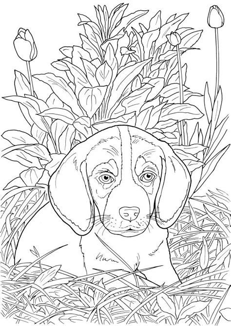 dog coloring page for adults 81 coloring pages of dogs for adults dog coloring