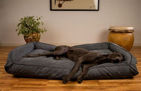 dog bed costco dog beds costco kirkland sofa bed com ultra plush memory