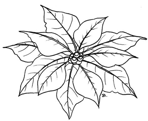 Beccy S Place Poinsettia Poinsettia Coloring Page