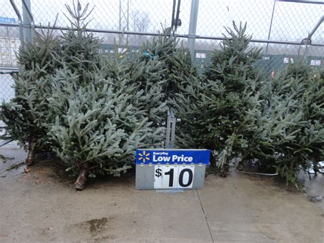 any size christmas tree real 10 walmart ship saves