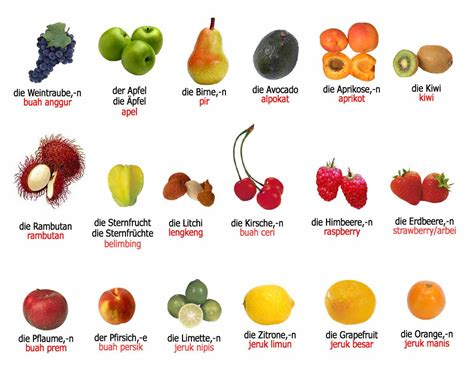 gambar aneka buah buahan dummy