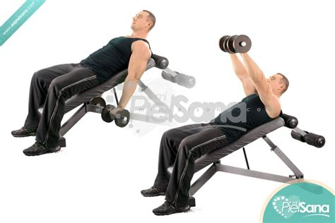 incline bench front raise dumbbell front raise on incline bench