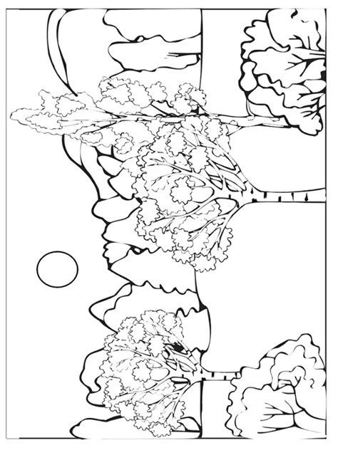 kids n fun com 37 coloring pages of autumn