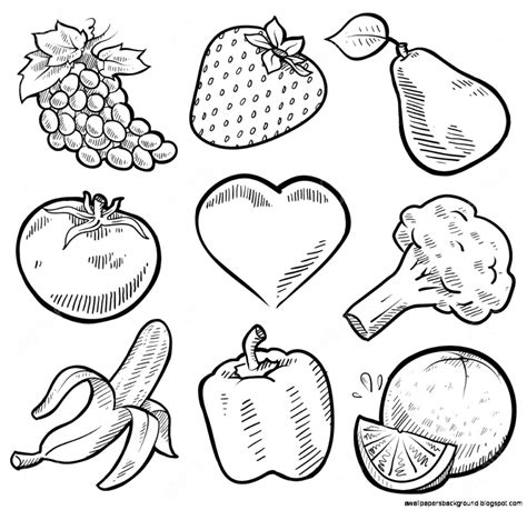 vegetables drawing vegetables and fruits drawing www pixshark images