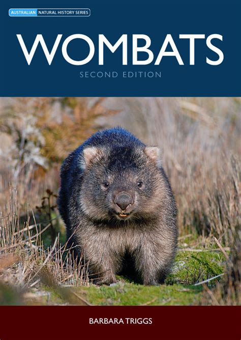 wombat picture book wombats barbara triggs 9780643097940