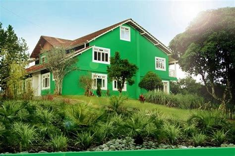 verde casa casa verde foto de spa aqua colore joinville tripadvisor