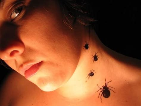 small spider tattoos spider tattoos page 32