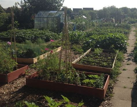 Garden Allotment Ideas Help We Ve Got An Allotment Ideas Tips And We