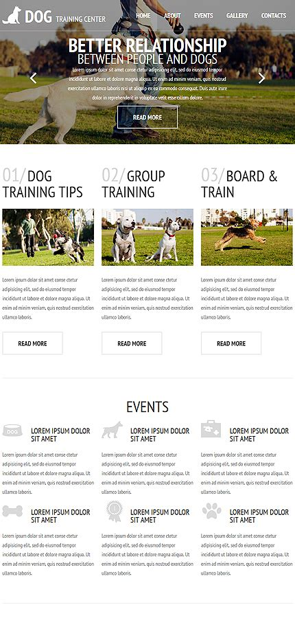 website templates for kennels kennel club web template