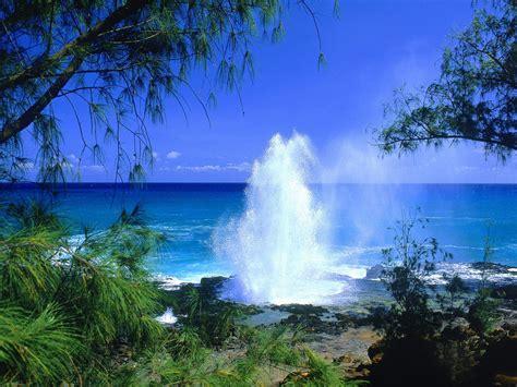 hawaii tourism bureau kauai hawaii tourist destinations