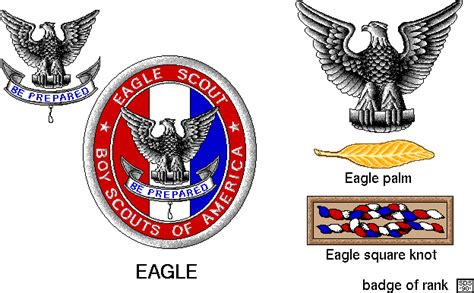 eagle scout insignia usssp clipart library