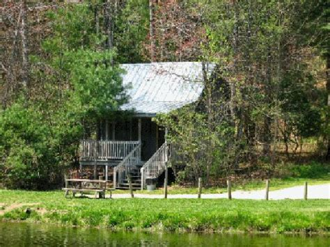 Lakeview Resort Lodge Cabins by 301 Moved Permanently