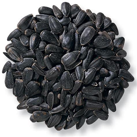 black sunflower seed tractor supply black sunflower seed usa