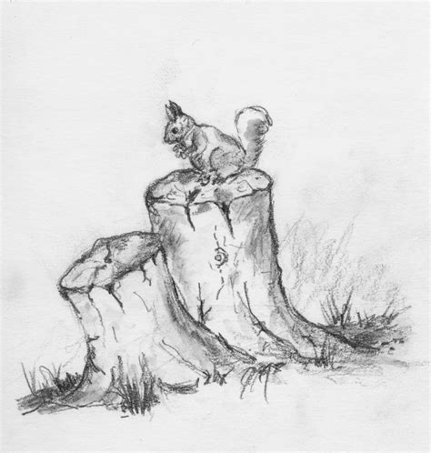 teddy bears on stumps squirrel on tree stump graphite
