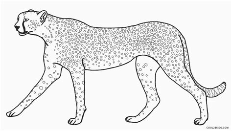 printable cheetah coloring pages for kids cool2bkids