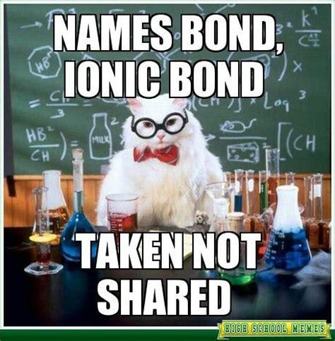 Chemistry Cat Meme - chemistry cat giggle pinterest