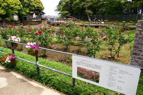 Peking Garden Sutton Ma | Klick Here to Find