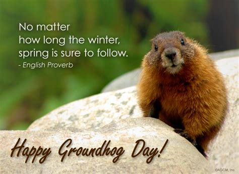 groundhog day saying 2nd feb 2016 happy groundhog day quotes images wishes