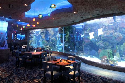 White Pages Lookup Tn Aquarium Restaurant In Nashville Tn Whitepages