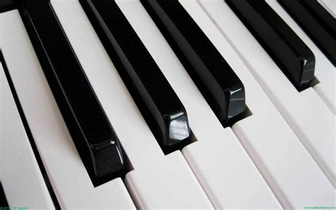 White Black Kets piano wallpaper wallpapersafari