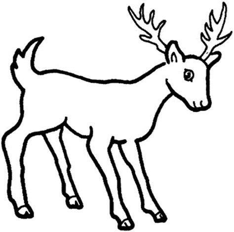 Cartoon Deer Coloring Pages | cartoon deer coloring pages bestappsforkids com