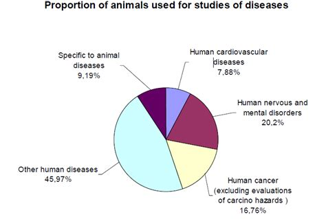 animal abuse graphs population newhairstylesformen2014 com makeup testing statistics mugeek vidalondon