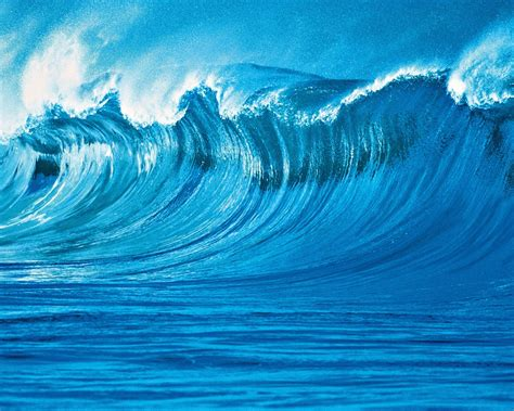 wave wall mural buy  europosters