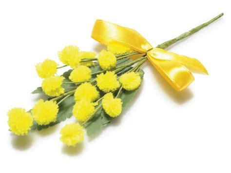 fiore mimosa immagini mazzolino di mimosa artificiale con fiore lanoso e