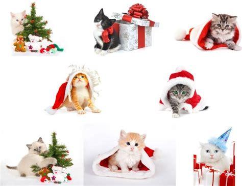 christmas images  wallpapergetcom