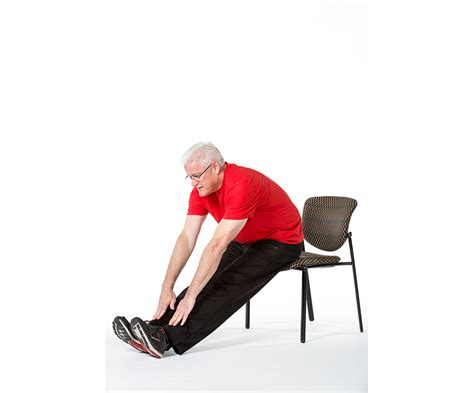 chair exercises for elderly adults 5 chair exercises for adults fitness health