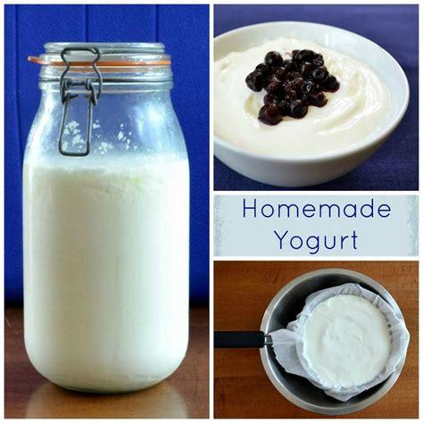 Handmade Real Foods - 17 best images about yogurt on yogurt