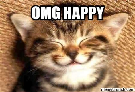 Happy Kitten Meme - excited cat memes image memes at relatably com