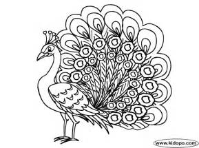 peacock coloring pages peacock coloring page