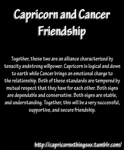 capricorn things joys of a capricorn astrological