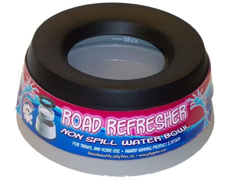 no spill bowl 5 best pet bowls offer fresh water tool box